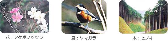 花:アケボノツツジ、鳥:ヤマガラ、木:ヒノキ
